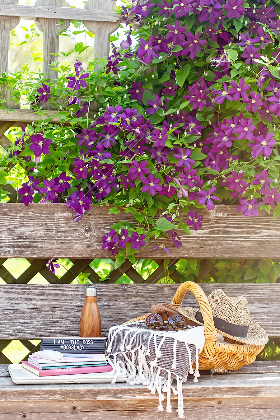 purple flowers and work materials on bench at Ornamental Gardens in Ottawa