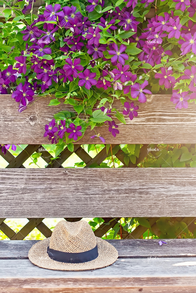 purple flowers and straw hat on bench at Ornamental Gardens in Ottawa